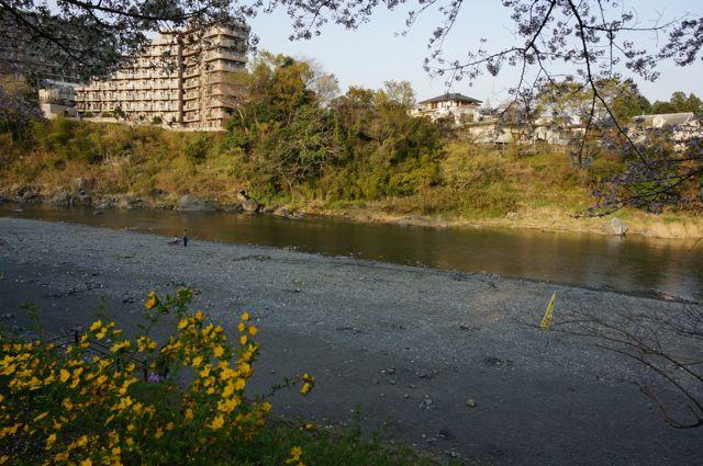 釜の淵公園の東側から見た多摩川