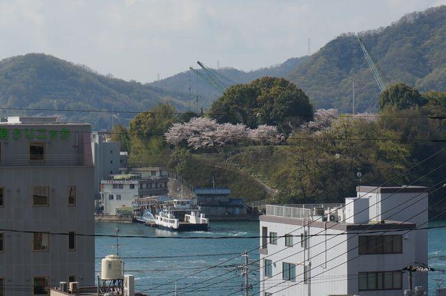 持光寺から見た向島(むかいしま)