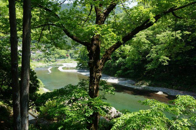 テラスから多摩川下流を望む