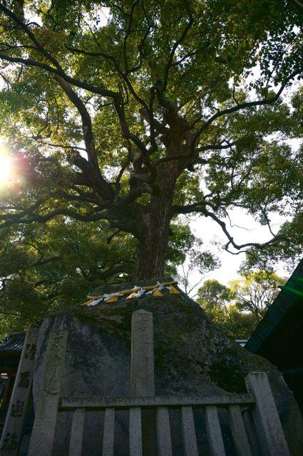 艮神社の大岩