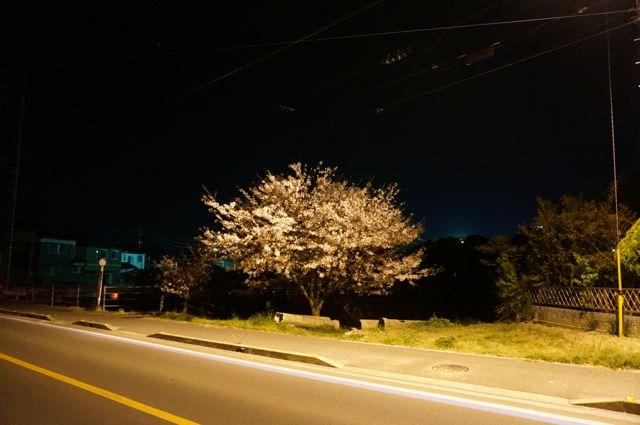 愛媛県道161号