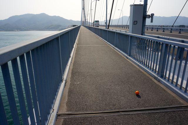 多々羅大橋の落とし物