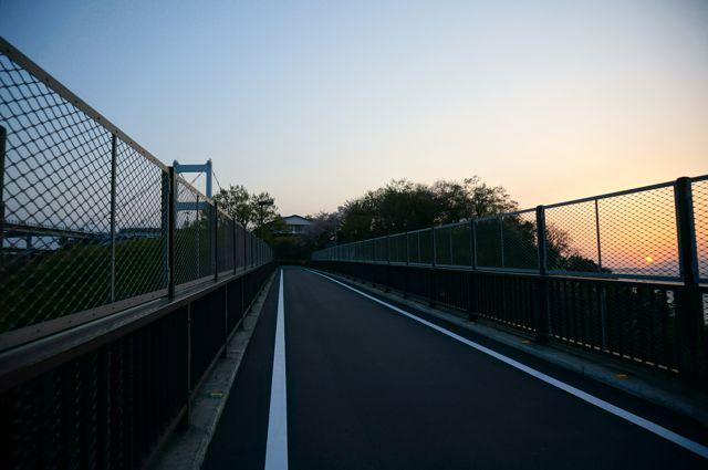 来島海峡大橋への道2