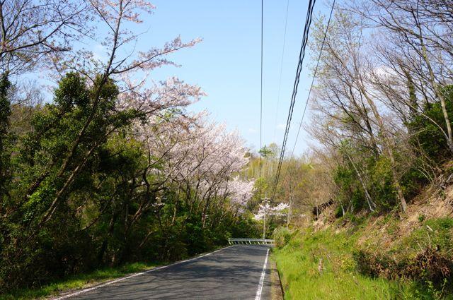 高見山への道2