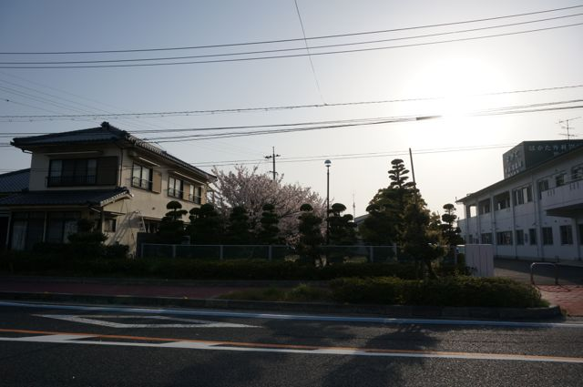 国道317号・伯方島