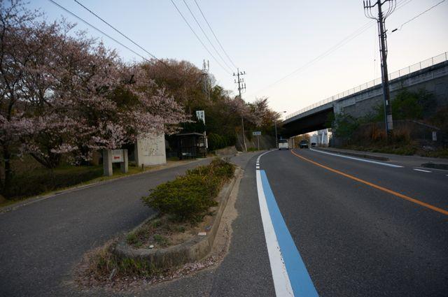 国道317号・大島3