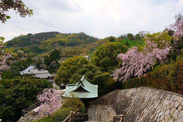 因島水軍城石段からの眺め