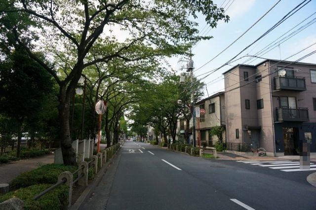 亀有の並木道