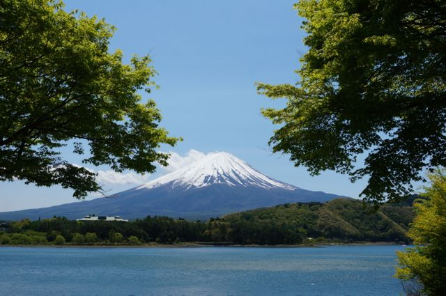 河口湖もみじ街道から眺める富士山