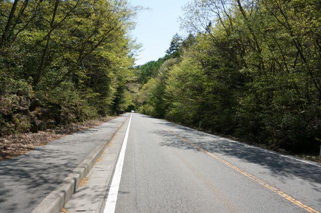 精進湖への道1
