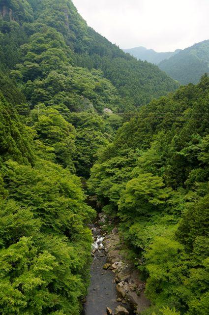 境橋から見た多摩川