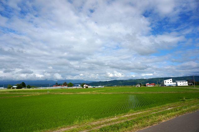 国道237号からの眺め・富良野