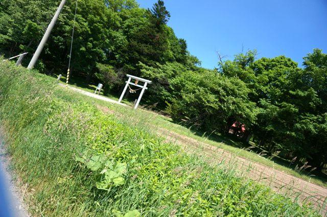 男山八幡神社