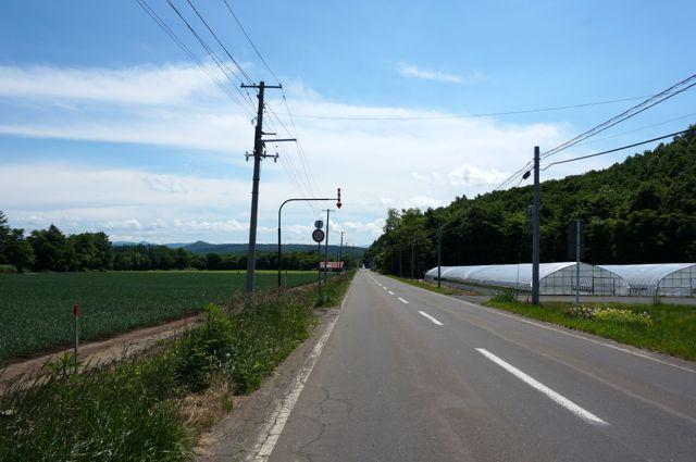 鳥沼公園への道1