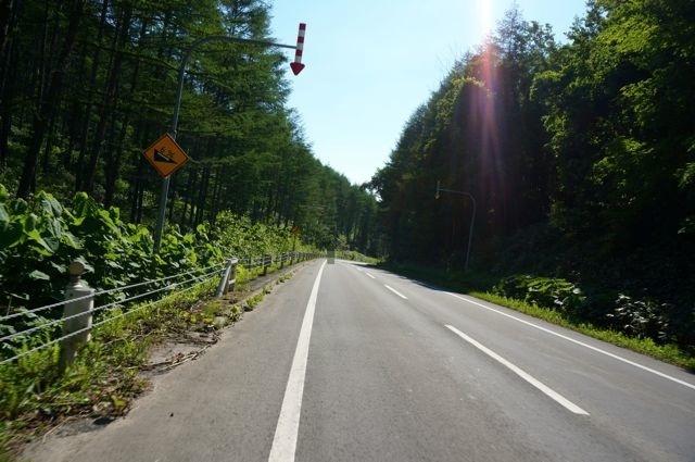 鳥沼公園への道2