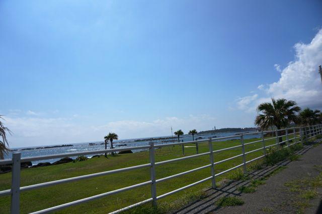 白浜の海辺