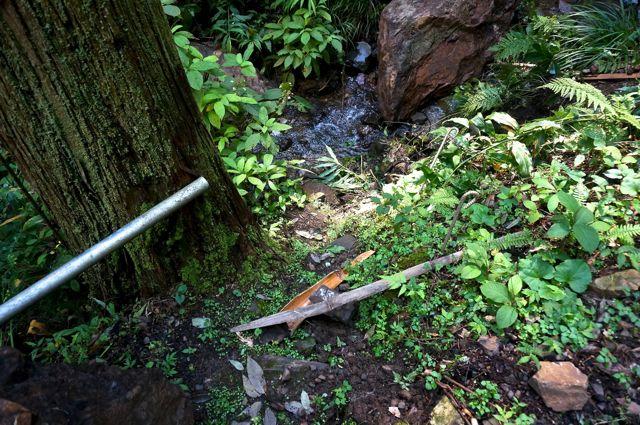 不動の滝へ下りられる川べり