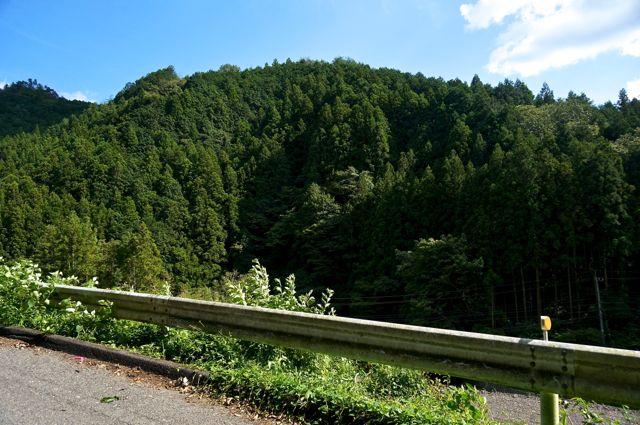 茨城県道322号からの眺め1